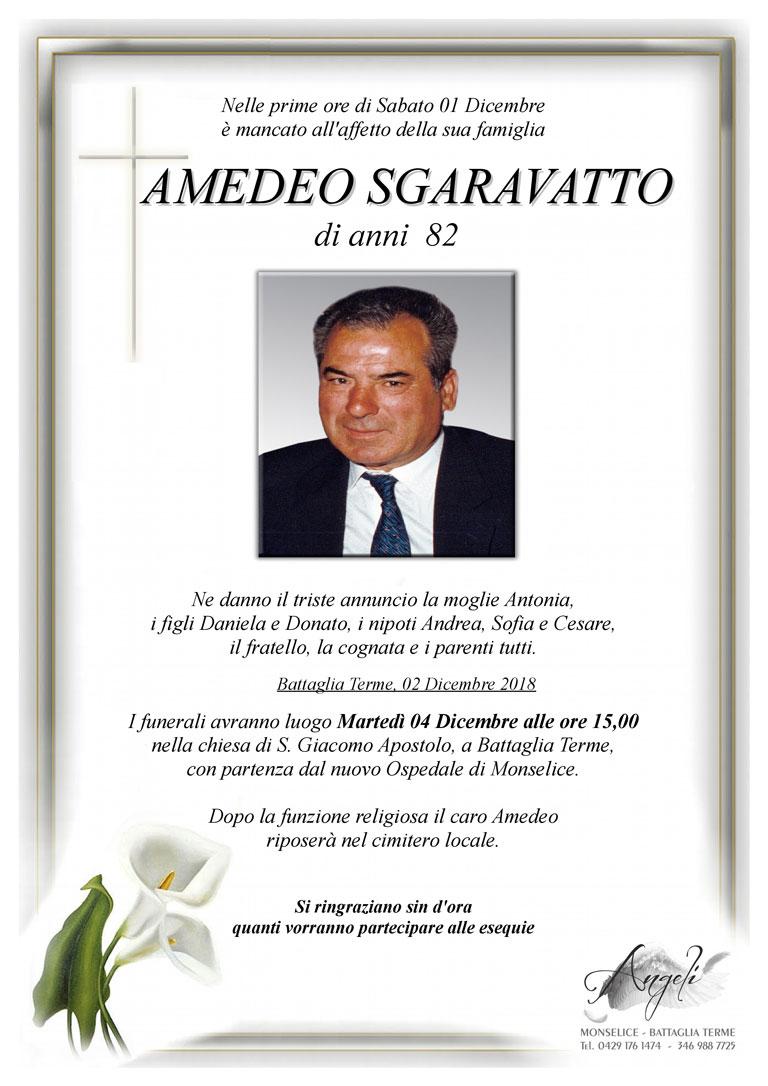 Amedeo Sgaravatto